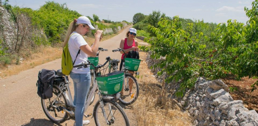 Guided cycle route by e-bike in Itria Valley